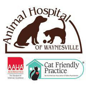 The Animal Hospital of Waynesville